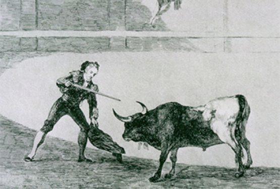 Bulls and Bayonets
