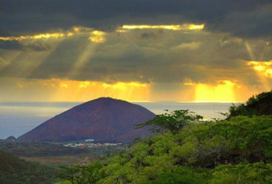Life on Ascension Island